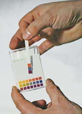 Bild 4: PH-Teststreifen